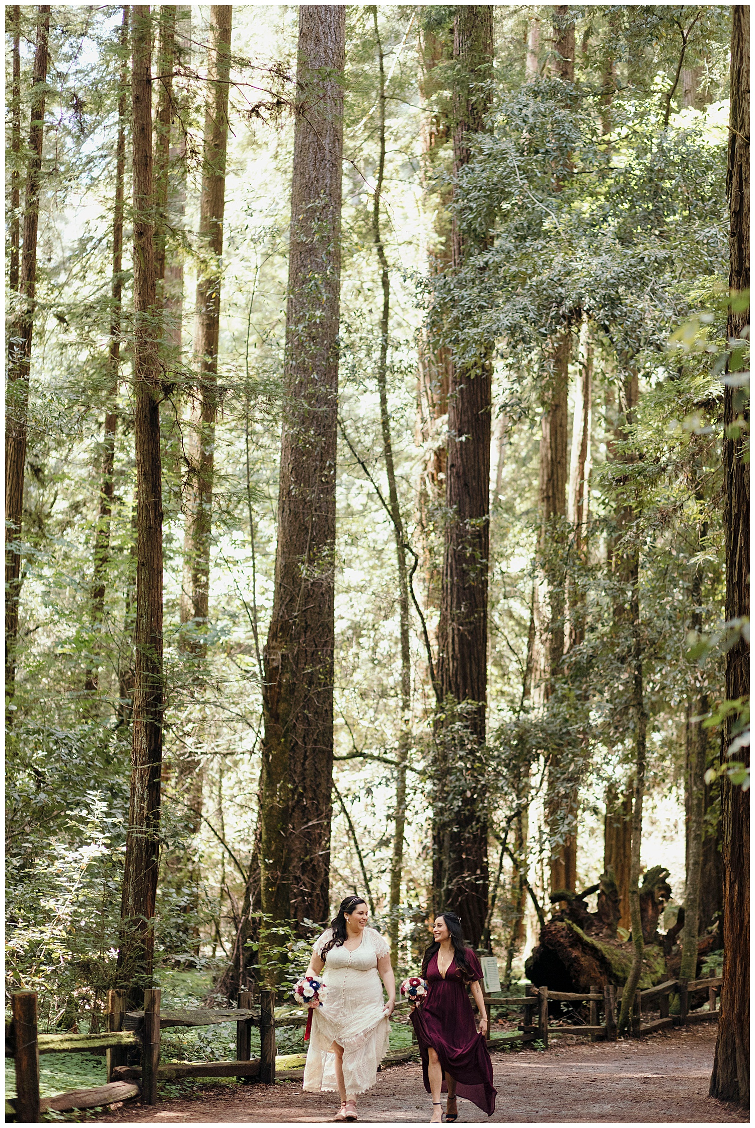 Bride walks with sister through the Henry Cowell redwoods in Felton to wedding