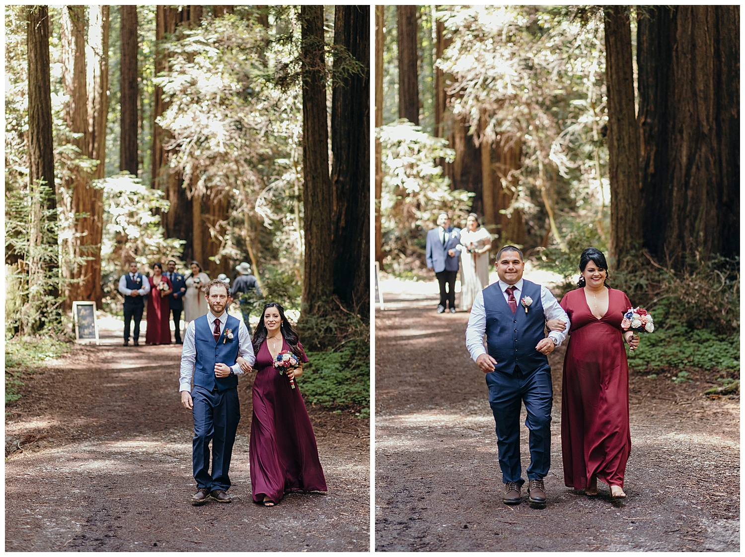 bridal party procession in Henry Cowell redwoods in Felton for wedding
