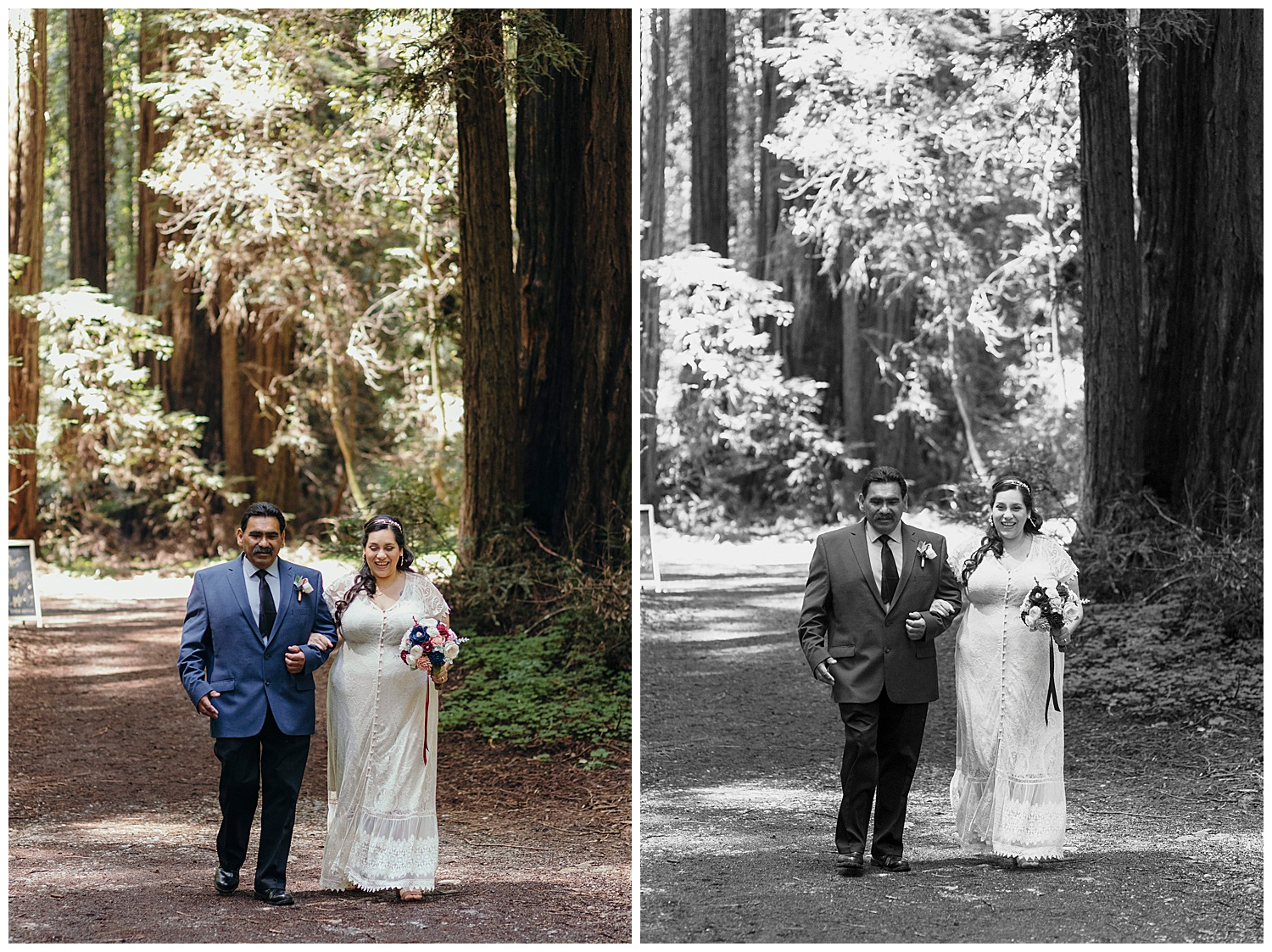 Bride walks with father in Henry Cowell redwoods wedding
