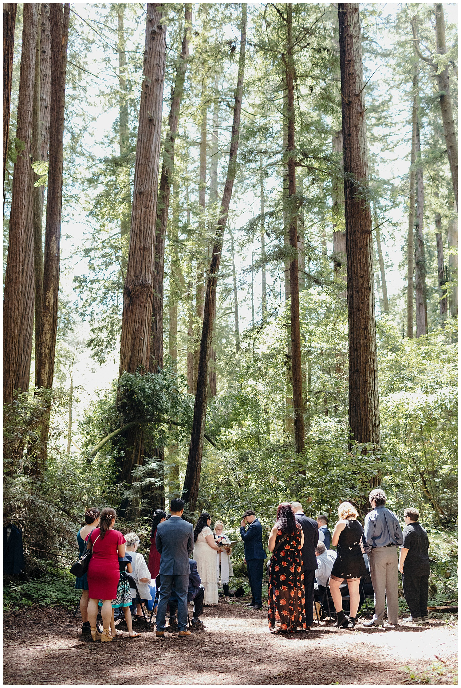 Groom wipes tear away in front of guests in Henry Cowell redwoods wedding