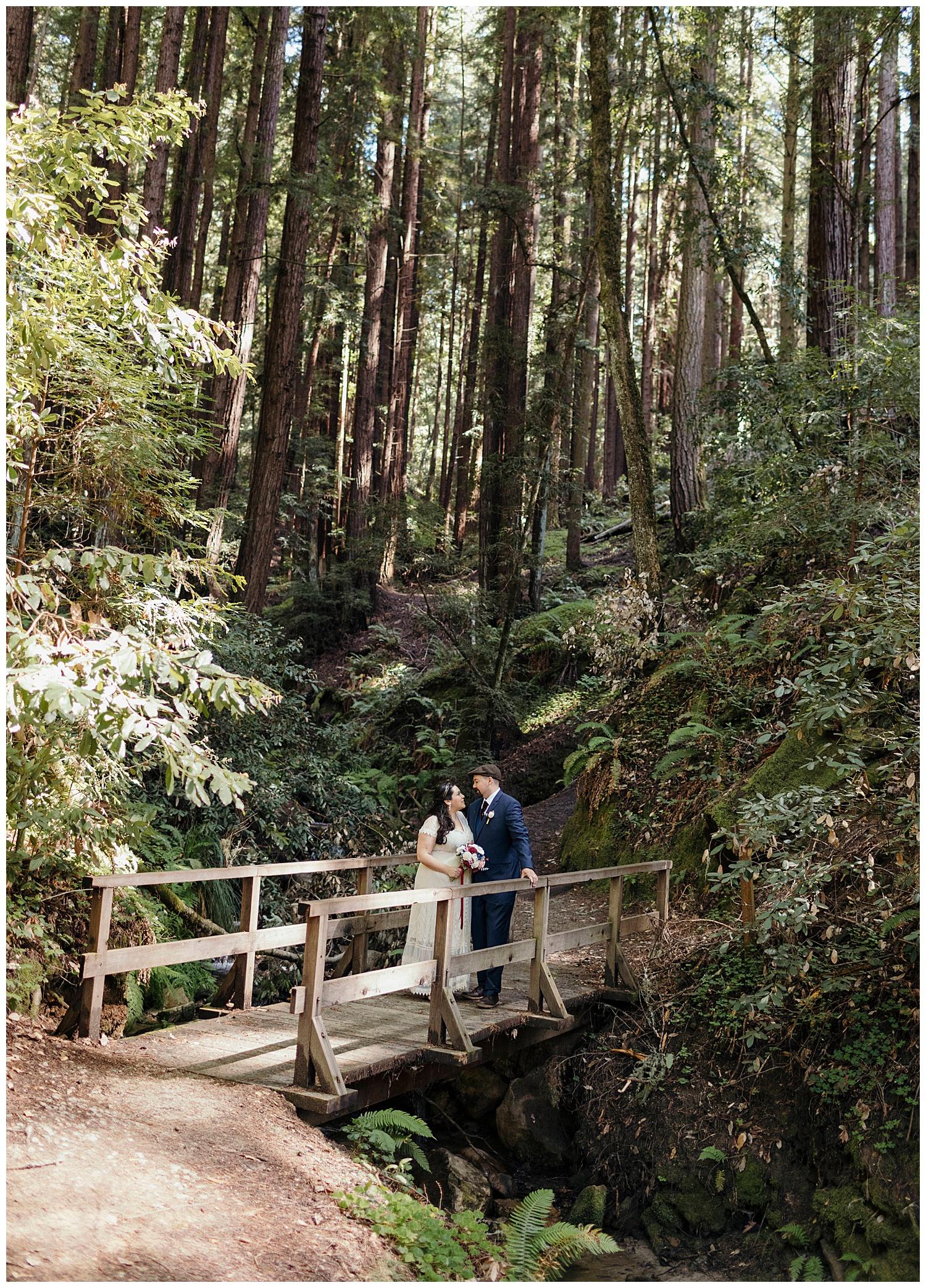 Bride and groom in Felton Henry Cowell redwoods